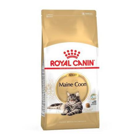 Royal Canin - Main Coon